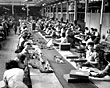 Meccano factorypacking line, Binns Road, Liverpool, 1950